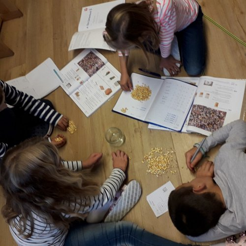 Bild zum Weblog Einblick VS-Schulalltag - Mathematik