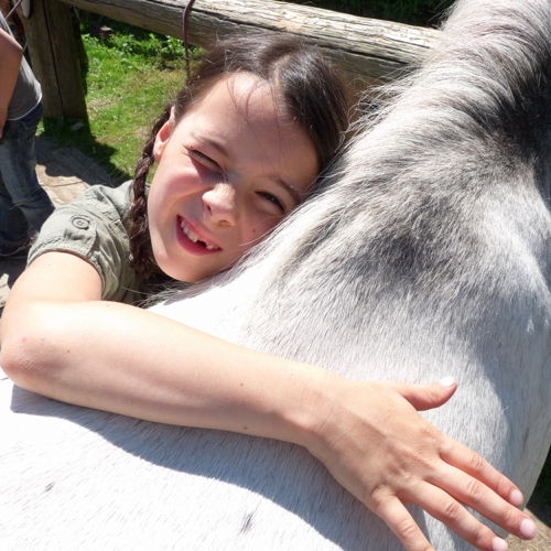 Bild zum Weblog Lehrausgang Pony