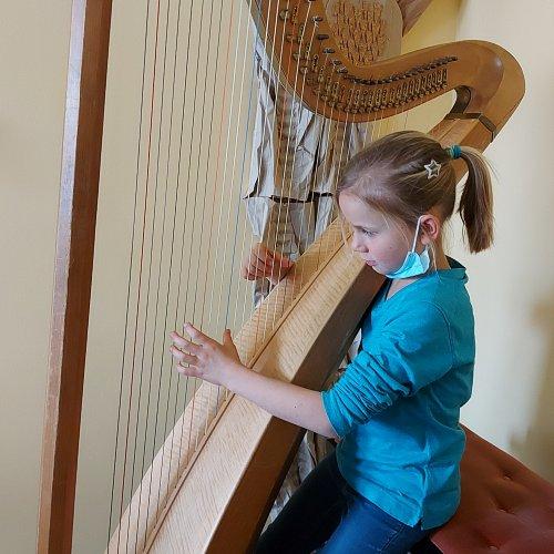 Bild zum Weblog VS - Musik: Zupfinstrumente