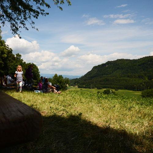 Bild zum Weblog WERTVOLLes Sommerfest