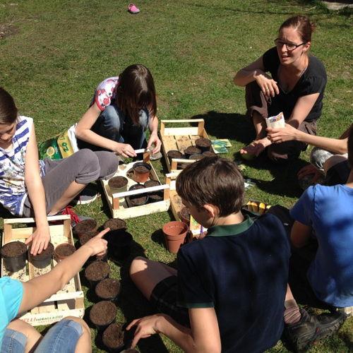 Bild zum Weblog Schulgarten