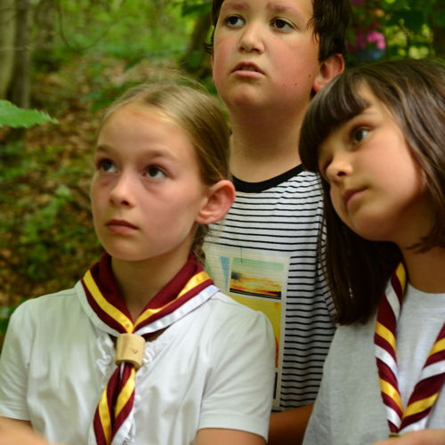 Bild zum Weblog Waldgottesdienst und Schulabschlussfest