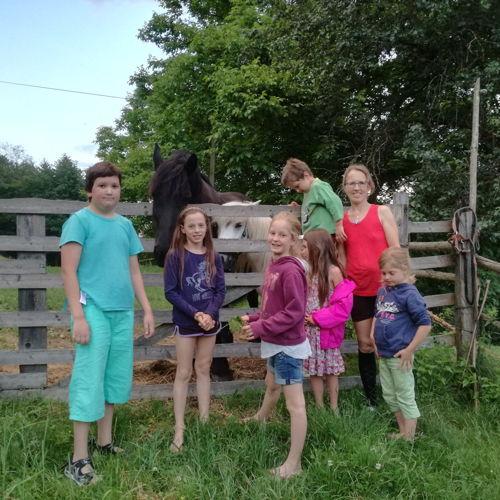 Bild zum Weblog Drei Tage am Bauernhof